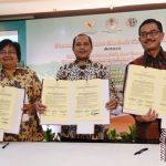 Kementerian Agraria dukung program ketahanan pangan transmigrasi