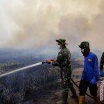 Menteri Agraria akan evaluasi HGU lahan yang terbakar